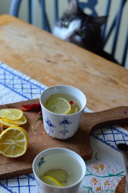 Ginger tea, ginger lemon tea, flu, Louise Campbell Elements, Elements has the Blue Fluted pattern, cold, contemporary Danish design, Blue Fluted, te mot forkjølelse, ingefær, ginger, sitron, lemon, royal copenhagen, Louise Campbell, porcelain, signe schineller, resignert,