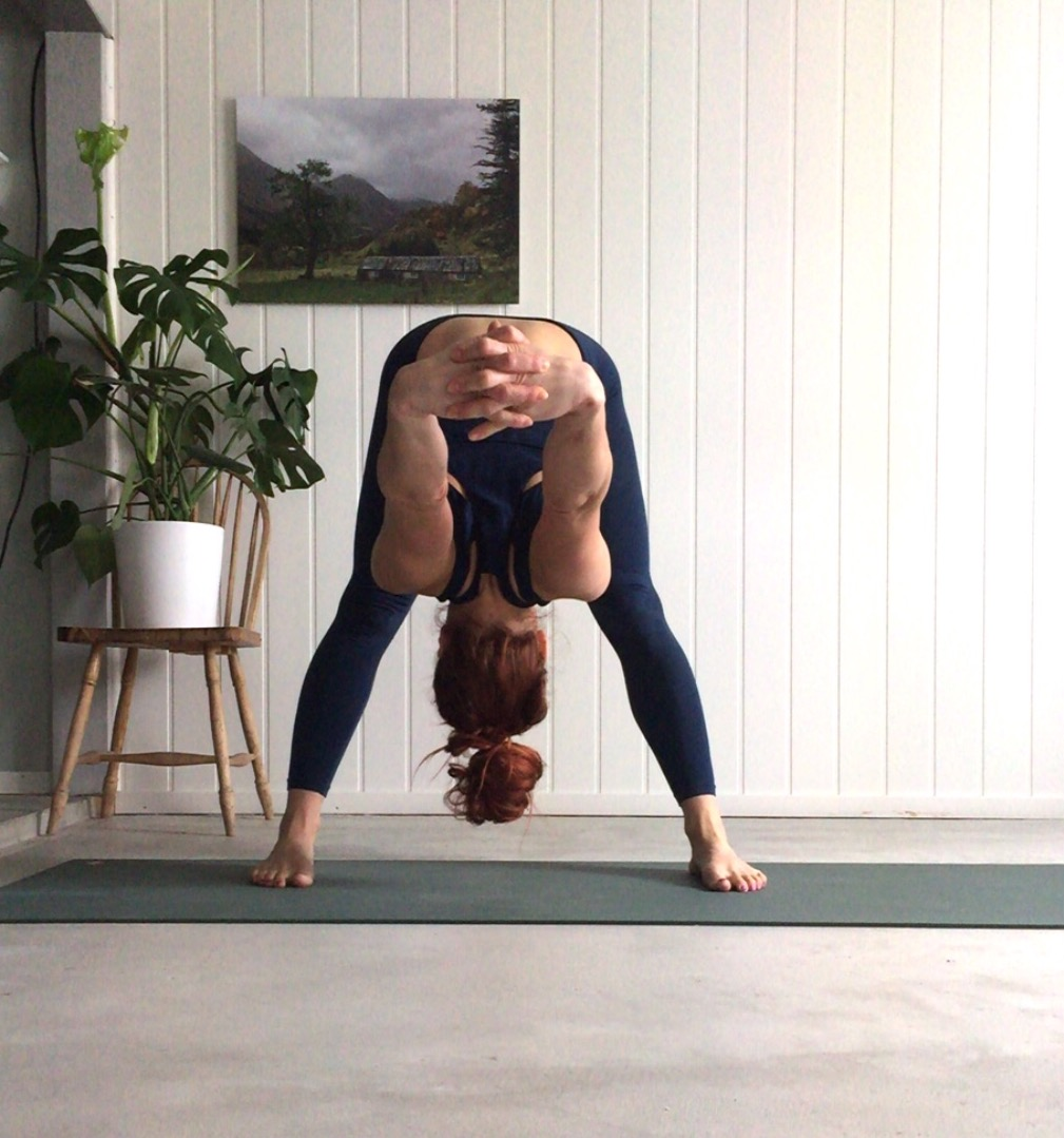 Uttanasana- Standing forward fold Ardha Pincha Mayurasana, yoga i rosendal, signe schineller, yoga signe schineller, run & relax, yoga retreat, yoga med signe, prasarita padottanasana, prasarita padottanasana c, manduka, lumi yoga,