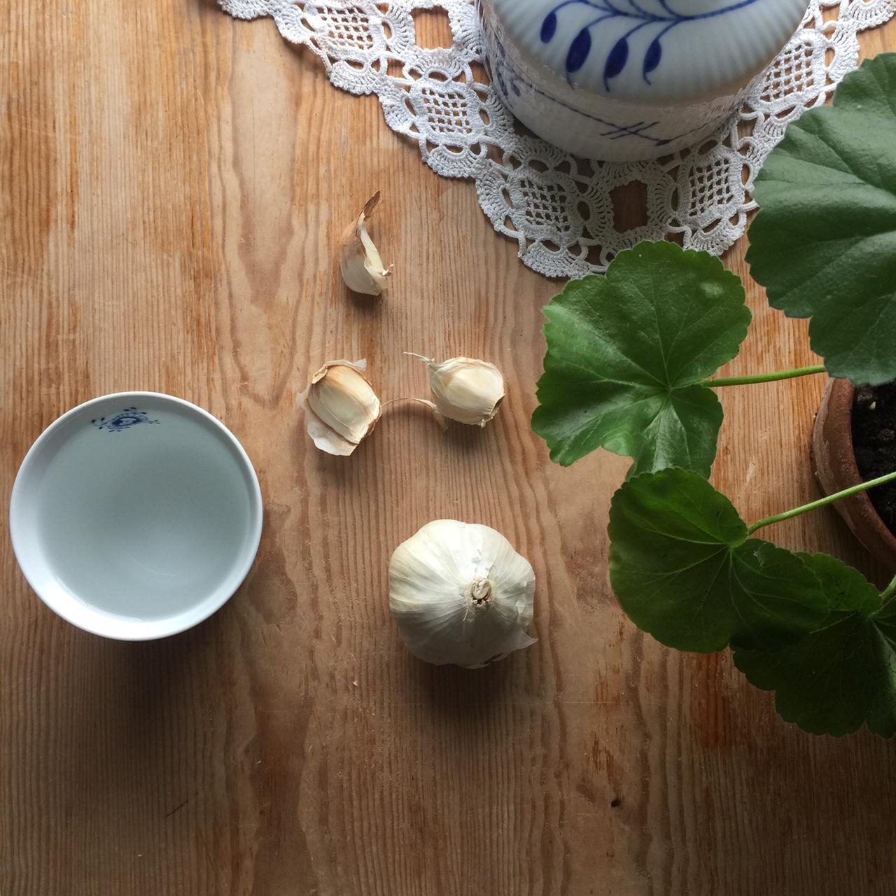 helse, hvitløk, helse hvitløk, sunt hvitløk, allicin, phytoncide, allicin garlic, phytoncide garlic, garlic benefits, hvitløk benefits, betennelsesdempende mat, inflammatory food,