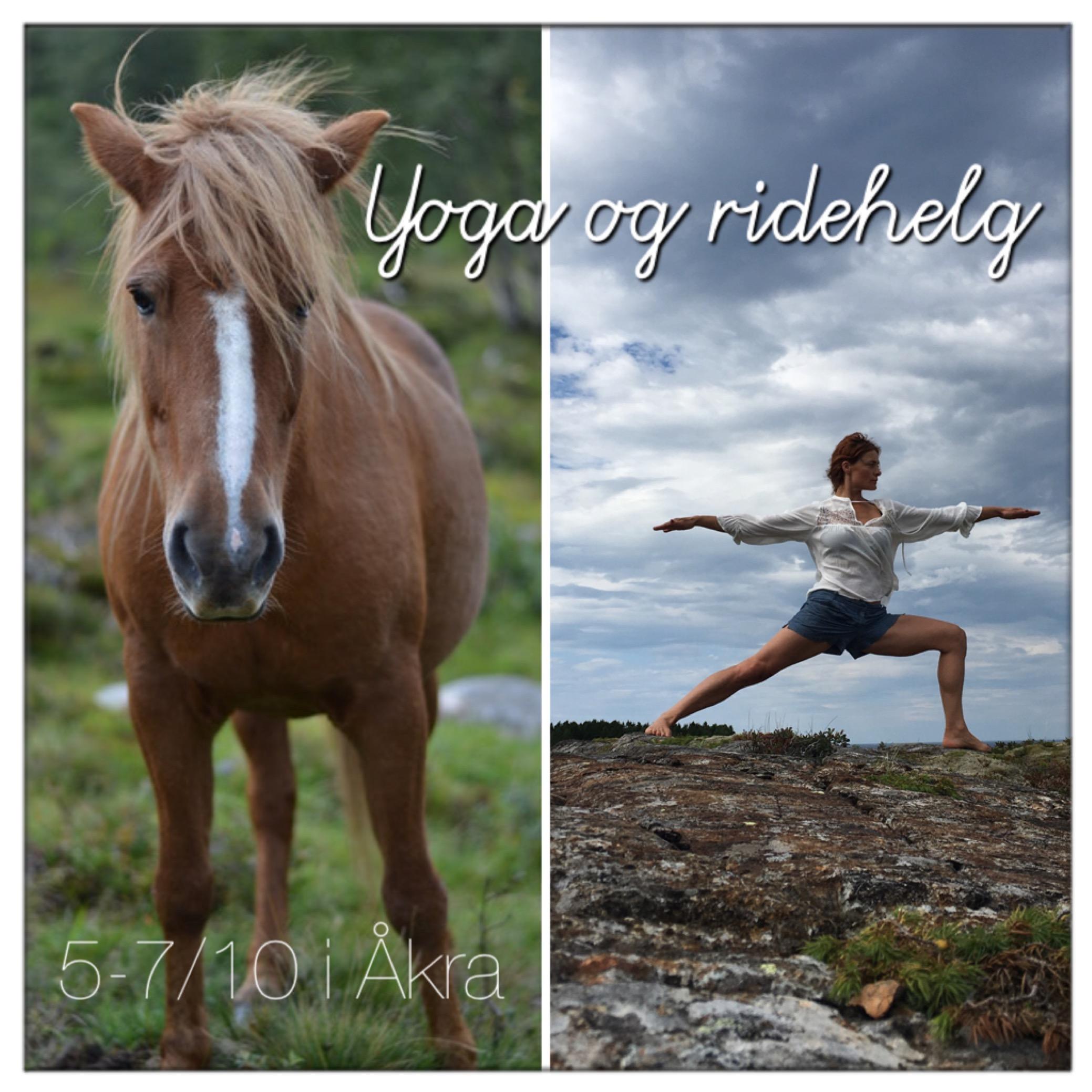 Yoga og ridehelg i Åkra 2019 settes snart opp.